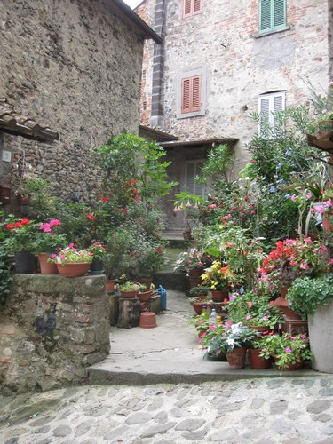 Potted flowers in Anghiari
