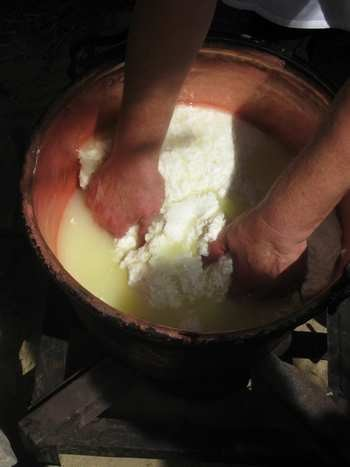 making percorino cheese