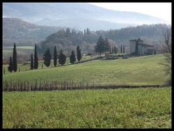 Surroundings of Rassina, Tuscany, Italy